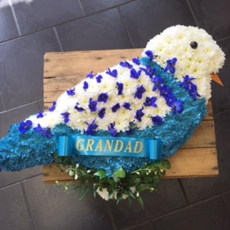 BIRD Tribute